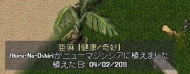 Ss11041212461300