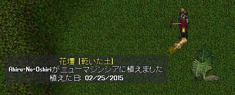 20150225_5