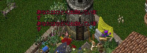 20171014_220117135_7